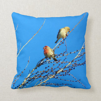 Male and Female House Finch Pillow
