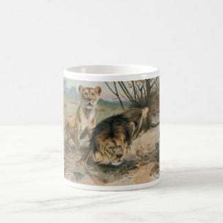 Male and Female Lion Coffee Mugs