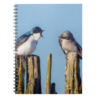 Male and female Tree Swallow Spiral Notebook