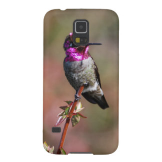 Male Anna's Hummingbird Case For Galaxy S5