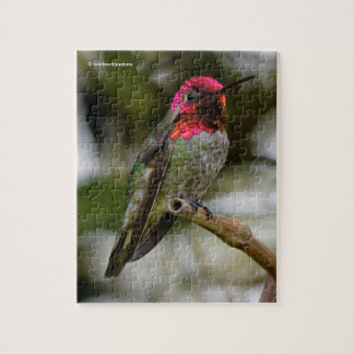 Male Anna's Hummingbird on the Kiwi Branch Jigsaw Puzzle