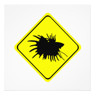 Male Betta Fish Silhouette Caution Crossing Sign Photo Art