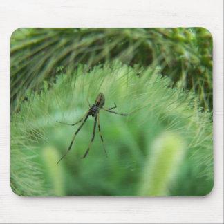 Male Black Widow Spider Mousepad