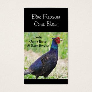 Male blue pheasant photo business card