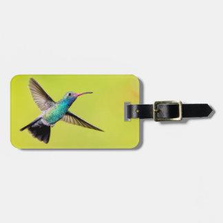 Male broad-billed hummingbird in flight bag tag