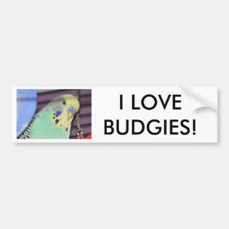 Male Budgie/ Parakeet Bumper Sticker