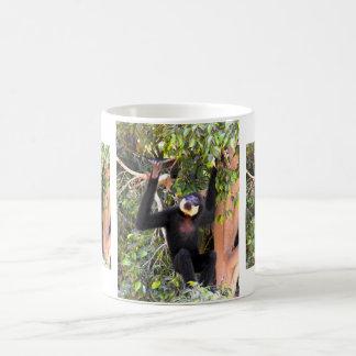 Male Buff cheeked gibbon Coffee Mug