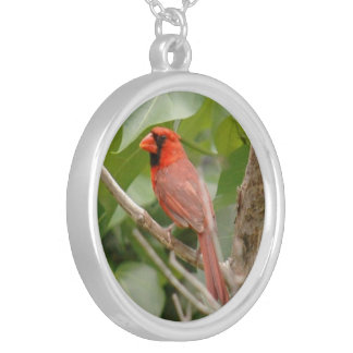 Male cardinal bird Necklace