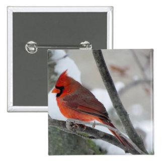 Male cardinal in the winter 2 inch square button