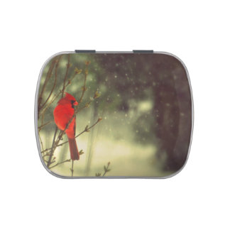 Male Cardinal Jelly Belly Tin