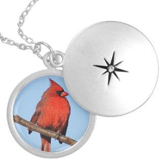 Male Cardinal Locket Necklace