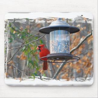 Male Cardinal Mouse Pad