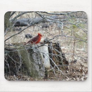 Male Cardinal on Tree Stump Mousepads