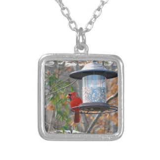 Male Cardinal Silver Plated Necklace