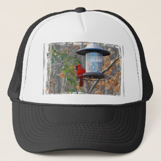 Male Cardinal Trucker Hat