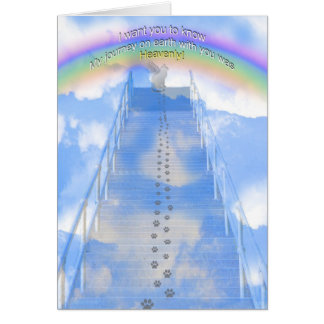 Male Cat Sympathy Card - Stairway to Heaven