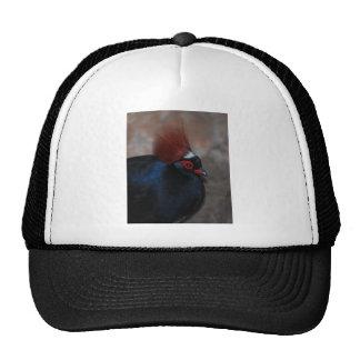 male crested wood partridge trucker hat