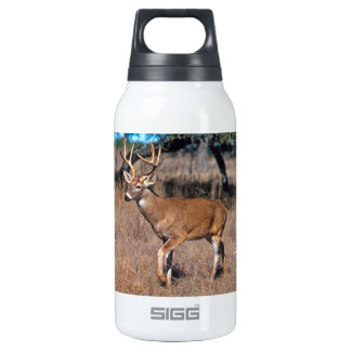 Male Deer Buck With Antlers 10 Oz Insulated SIGG Thermos Water Bottle