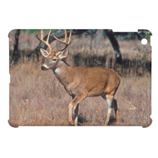 Male Deer Buck With Antlers iPad Mini Cover
