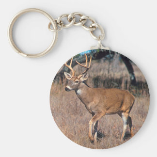 Male Deer Buck With Antlers Keychain