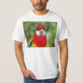 Male Eastern Rosella T-Shirt