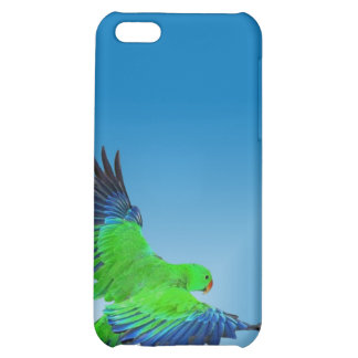 male eclectus iphone4 case case for iPhone 5C