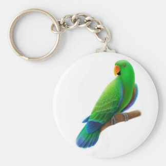 Male Eclectus Keychain