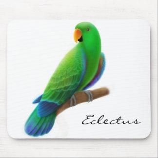 Male Eclectus Mousepad