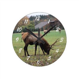 Male Elk Photograph Antlers Field Autumn Round Clock