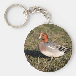 male Eurasian Wigeon Duck walks in a grassy field Basic Round Button Keychain