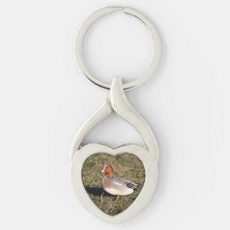 Male Eurasian Wigeon Duck walks in a grassy field Silver-Colored Heart-Shaped Metal Keychain