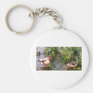 Male & Female Mallard Guarding babies Basic Round Button Keychain
