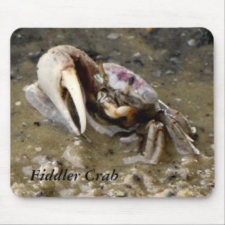 Male Fiddler Crab Mouse Pad
