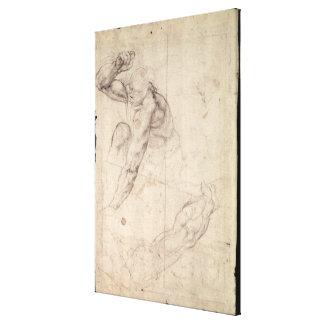 Male figure study canvas print