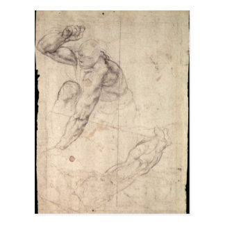 Male figure study postcard