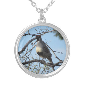 Male Gambel's Quail Silver Plated Necklace