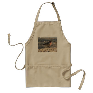 Male House Finch Adult Apron