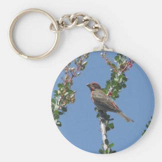 Male House Finch on Ocotillo Keychains