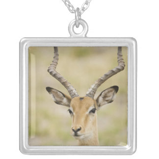 Male impala with beautiful horns in soft light square pendant necklace