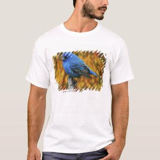 Male Indigo Bunting, Passerina cyanea T-Shirt