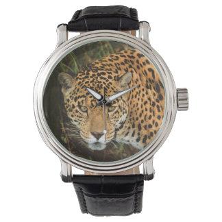 Male Jaguar Watch