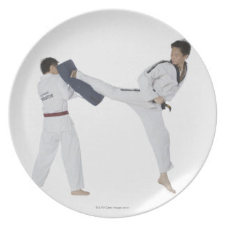 Male karate instructor teaching martial arts to 2 plate