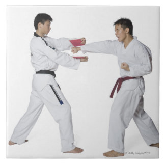 Male karate instructor teaching martial arts to ceramic tile