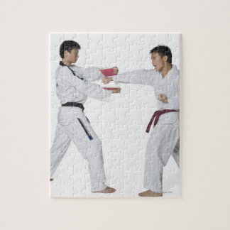Male karate instructor teaching martial arts to jigsaw puzzle
