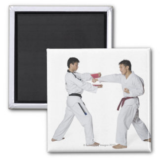 Male karate instructor teaching martial arts to magnet