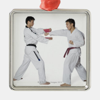 Male karate instructor teaching martial arts to metal ornament