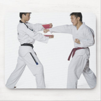 Male karate instructor teaching martial arts to mouse pad