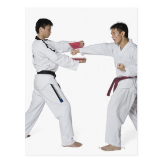 Male karate instructor teaching martial arts to postcard