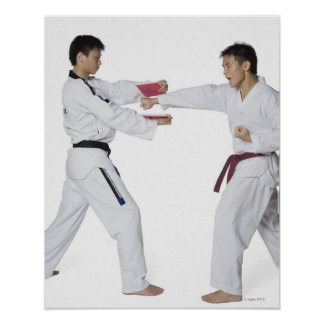 Male karate instructor teaching martial arts to poster