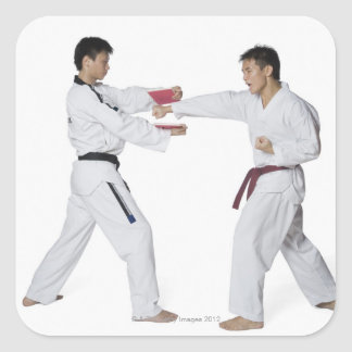 Male karate instructor teaching martial arts to square stickers